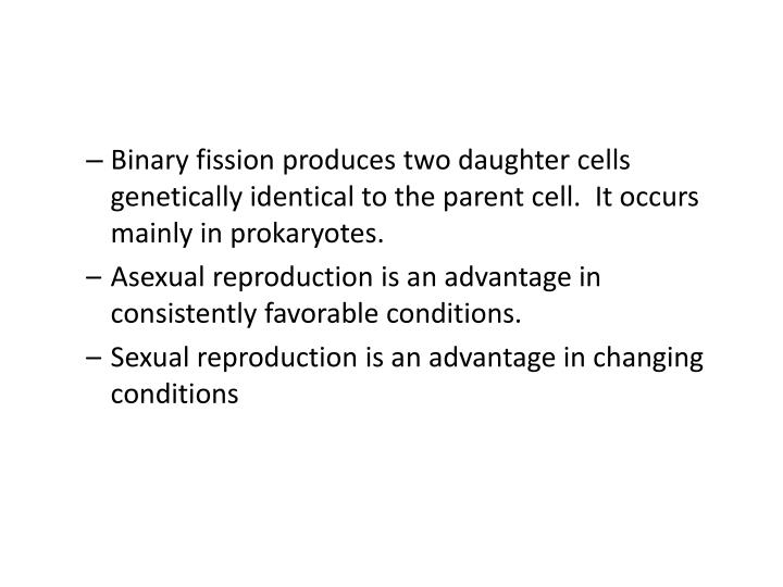 Binary fission produces two daughter cells genetically identical to the parent cell.  It occurs mainly in prokaryotes.