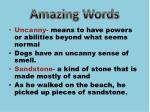 amazing words1