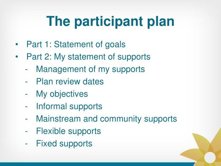 The participant plan