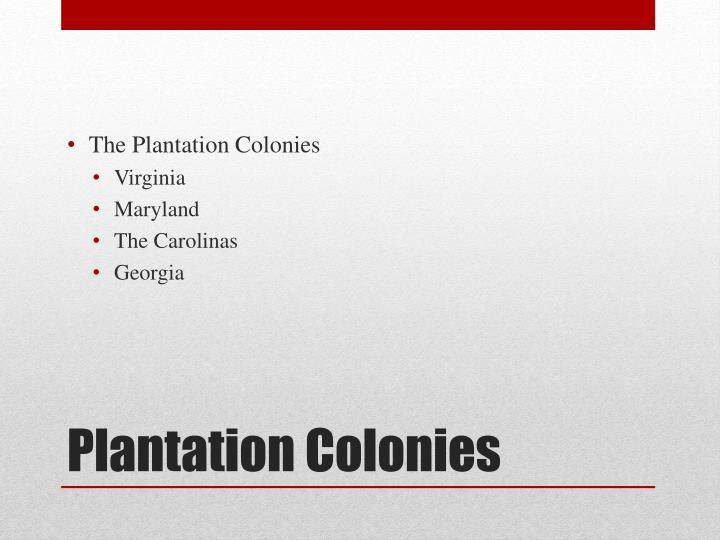 The Plantation Colonies