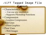 tiff tagged image file format