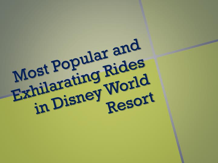 Most Popular and Exhilarating Rides in Disney World Resort
