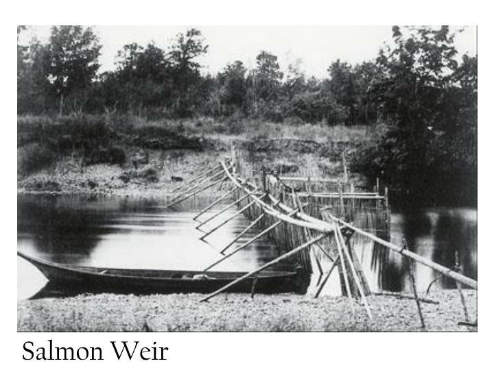 Salmon Weir
