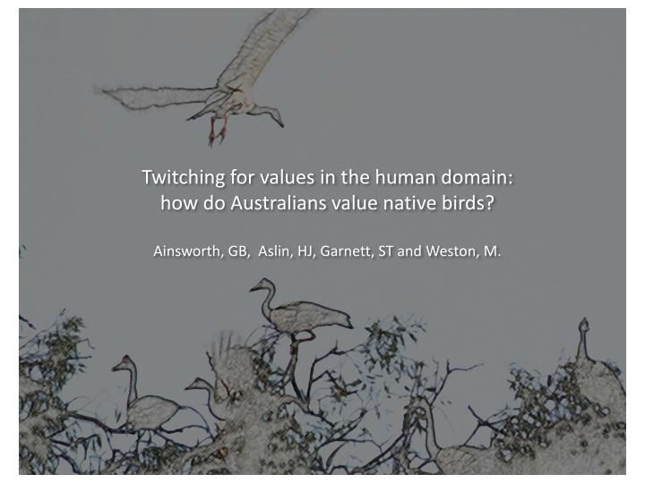 Twitching for values in the human domain: