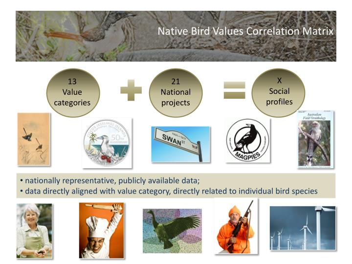 Native Bird Values Correlation Matrix
