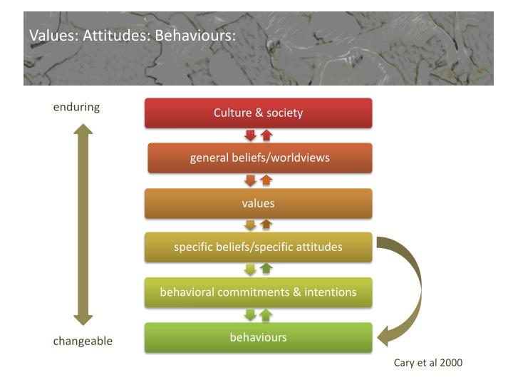Values: Attitudes: Behaviours: