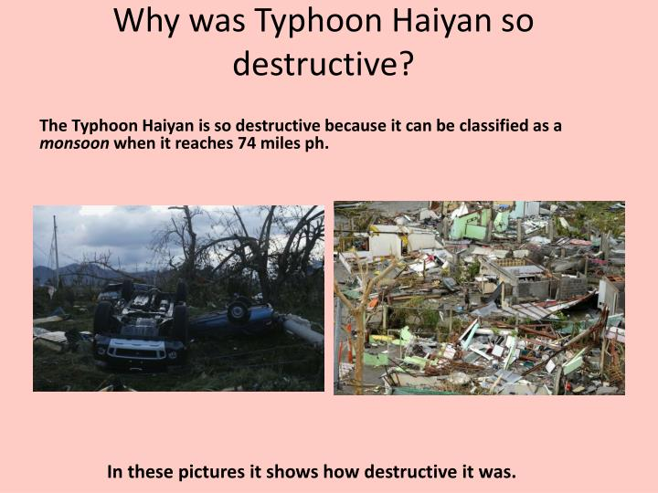 Why was Typhoon