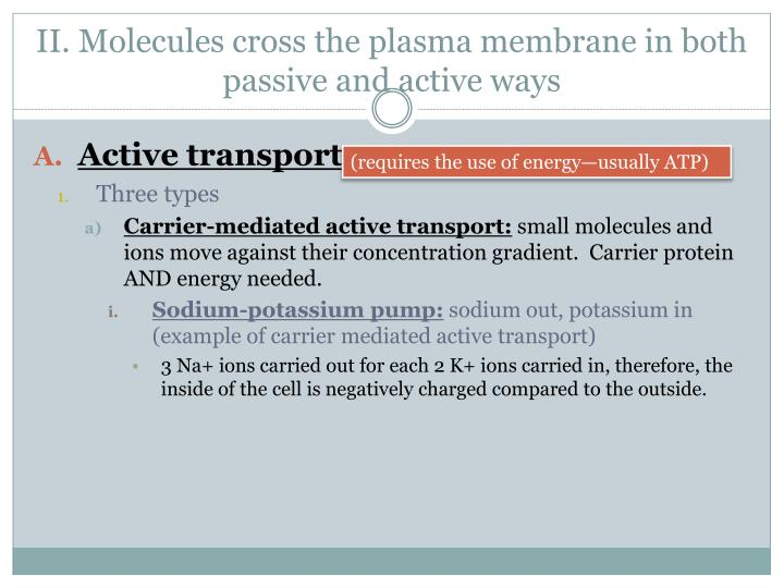 II. Molecules cross the plasma membrane in both passive and active ways