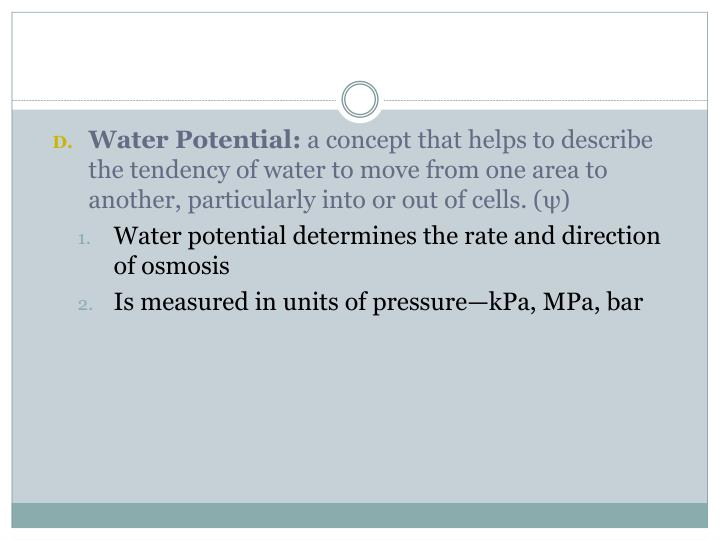 Water Potential: