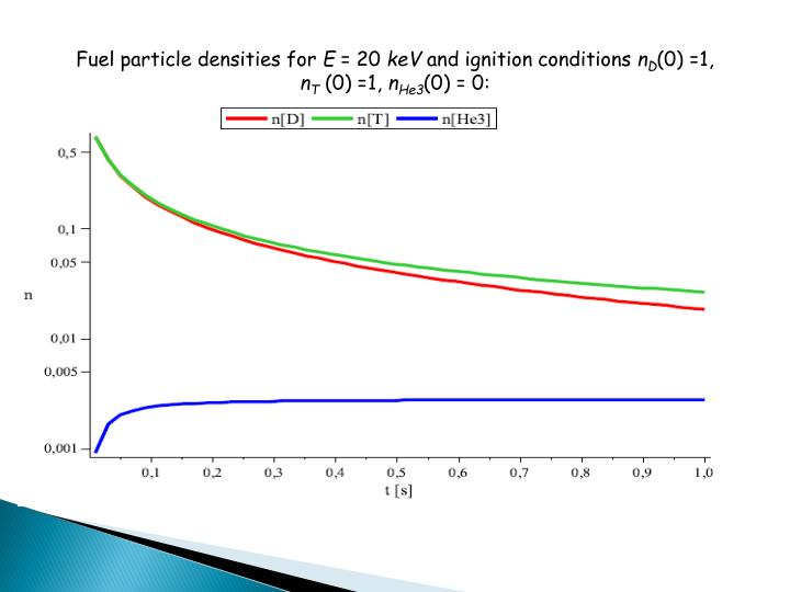 Fuel particle densities for