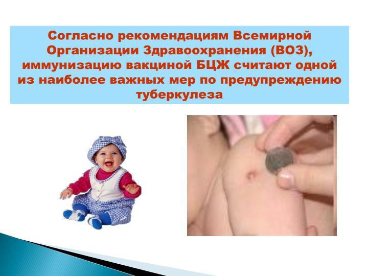 Согласно рекомендациям Всемирной Организации Здравоохранения (ВОЗ), иммунизацию вакциной БЦЖ считают одной из наиболее важных мер по предупреждению туберкулеза