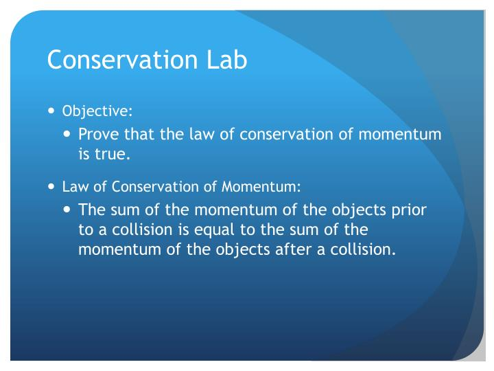 Conservation Lab