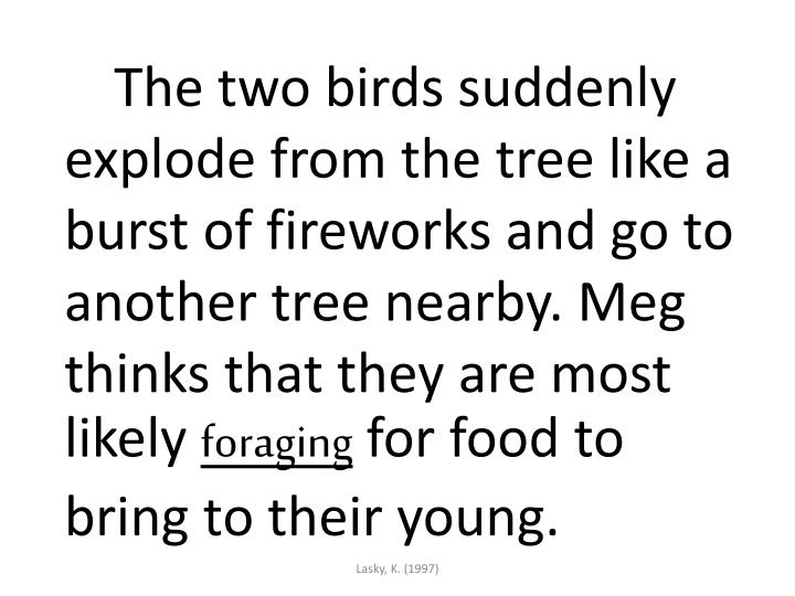 The two birds suddenly explode from the tree like a burst of fireworks and go to another tree nearby. Meg thinks that they are most likely