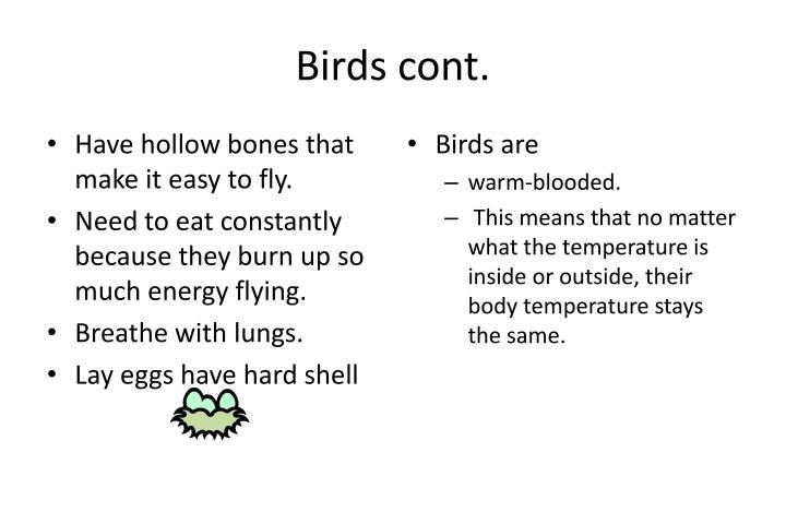 Birds cont.