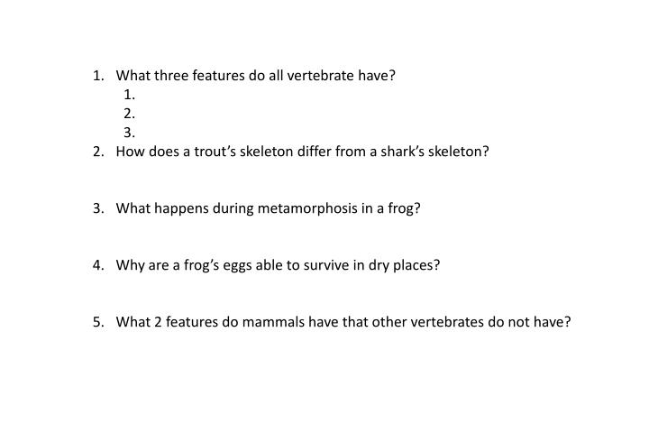 What three features do all vertebrate have?