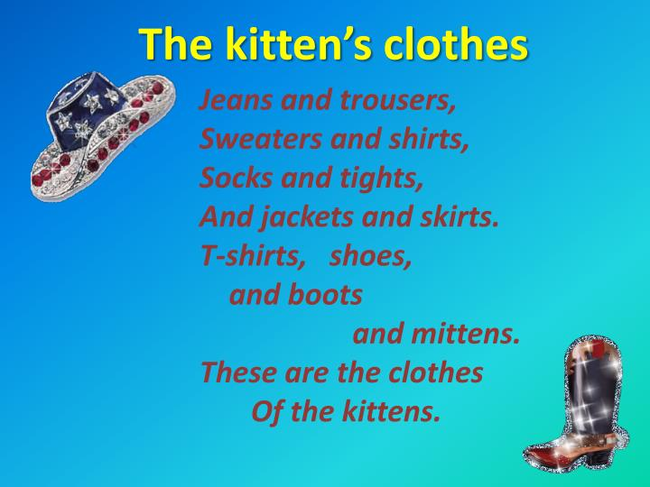 The kitten s clothes