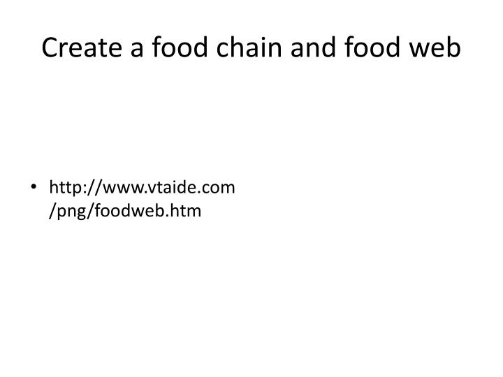 Create a food chain and food web