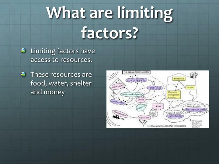 What are limiting factors?