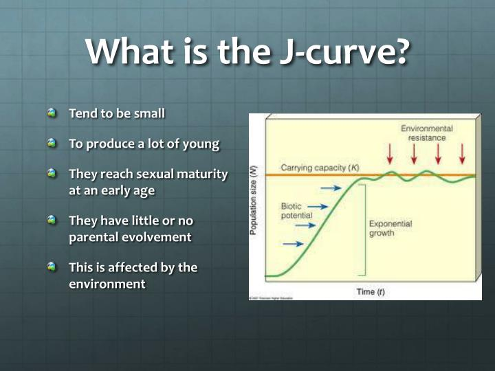 What is the J-curve?