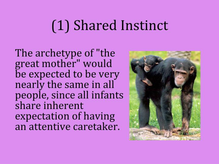 (1) Shared Instinct