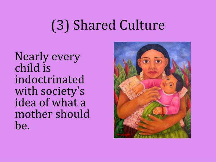 (3) Shared Culture