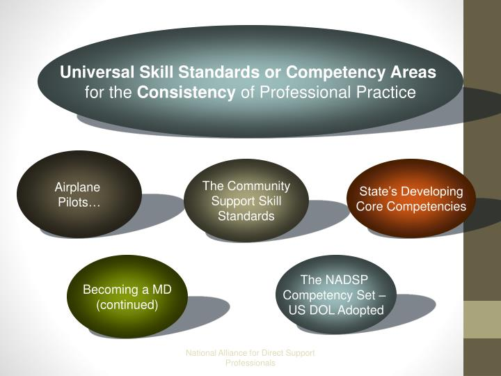 Universal Skill Standards or Competency Areas