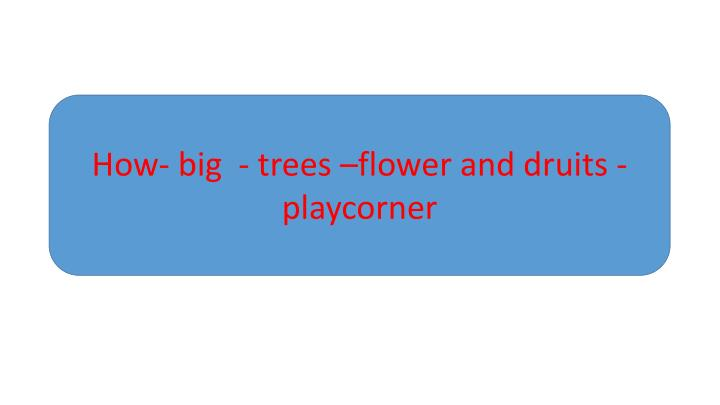How- big  - trees –flower and