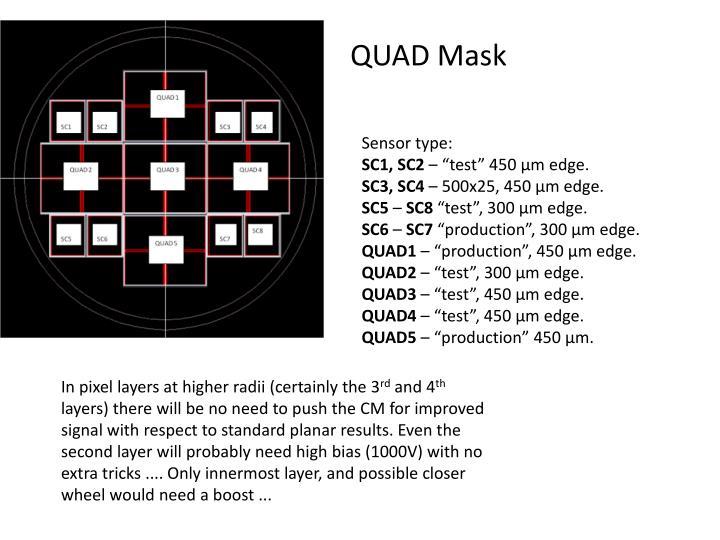 QUAD Mask