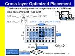 cross layer optimized placement6