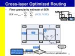 cross layer optimized routing2