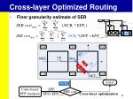 cross layer optimized routing4