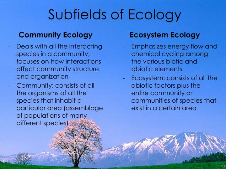 Subfields of Ecology