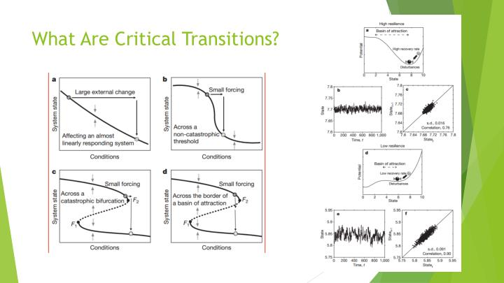 What are critical transitions