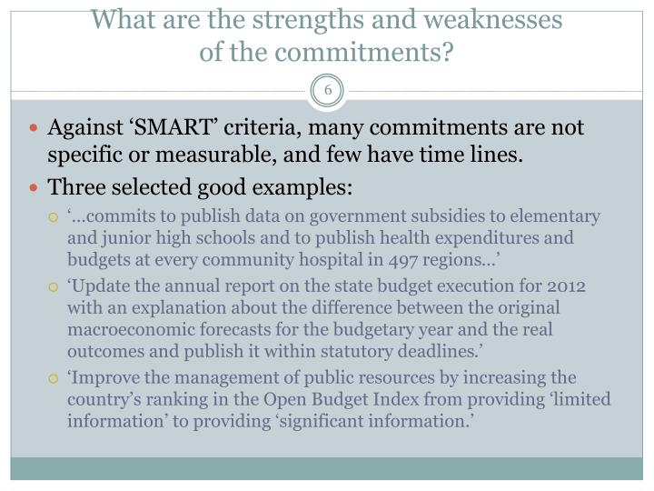 What are the strengths and weaknesses