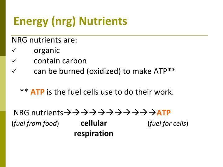 Energy (nrg) Nutrients