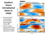 southern ocean microphysical biases in cam5