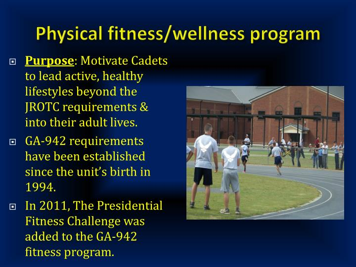 Physical fitness/wellness program
