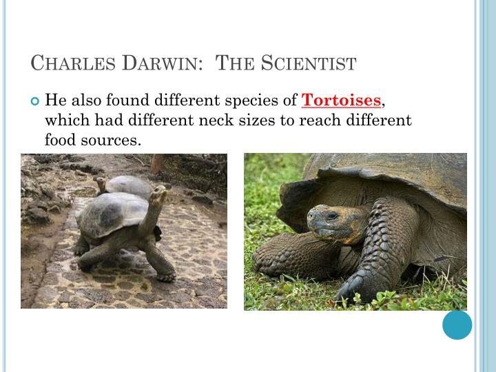 Charles Darwin:  The Scientist