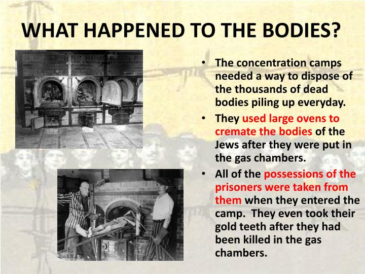 WHAT HAPPENED TO THE BODIES?