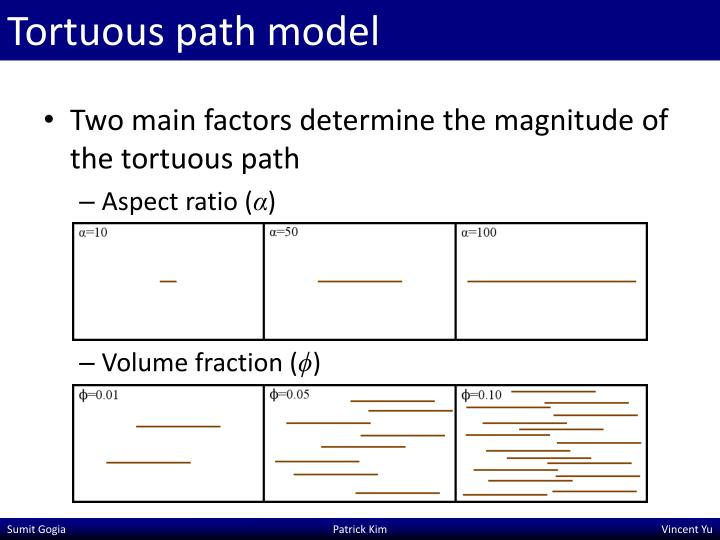 Tortuous path model