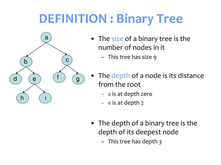 Definition binary tree1