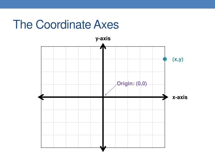 The coordinate axes