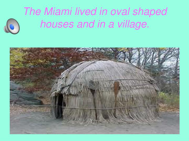 The miami lived in oval shaped houses and in a village