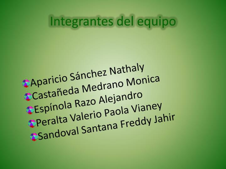 Integrantes del equipo