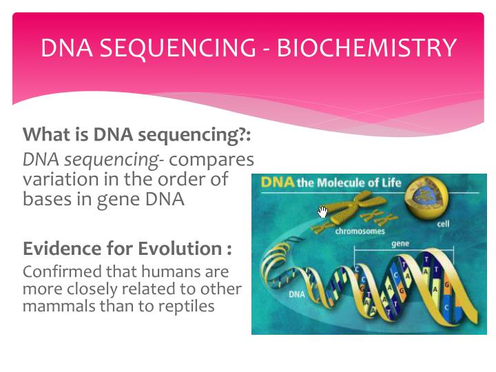 DNA SEQUENCING - BIOCHEMISTRY