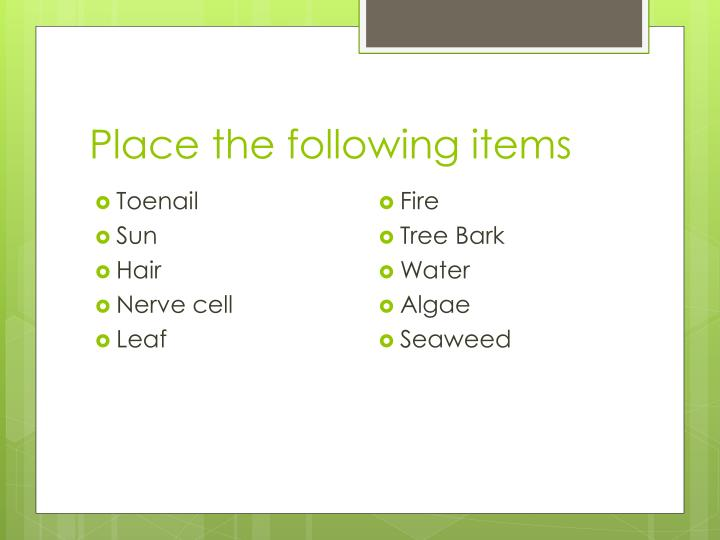 Place the following items