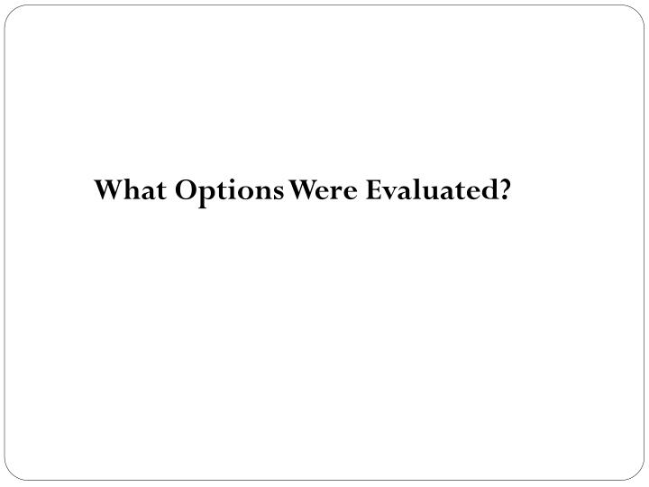 What Options Were Evaluated?
