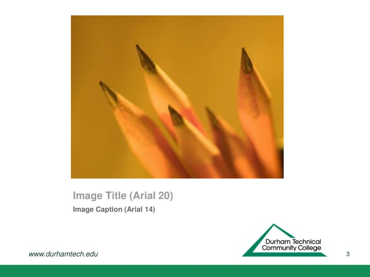Image Title (Arial 20)