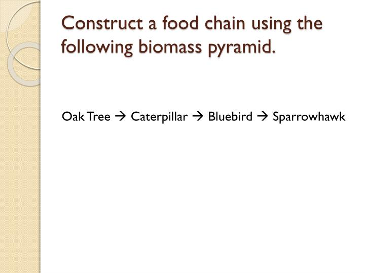 Construct a food chain using the following biomass pyramid.