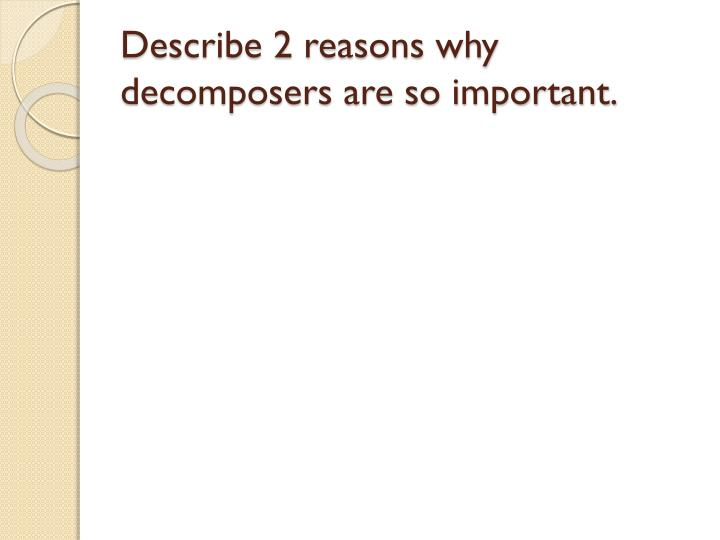 Describe 2 reasons why decomposers are so important.